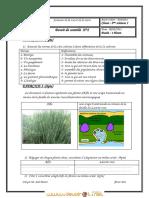 Devoir Corrigé de Contrôle N°2 - SVT - 2ème Sciences (2010-2011)  Elève lina.pdf