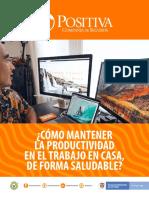 productividad en trabajo casa..pdf