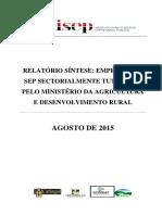 Análise _AgriculturaV1_Relatório síntese 2015