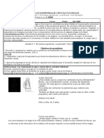 Guía Ciencias autoaprendizaje unidad 1 6° básico