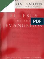 caba,_jose_-_el_jesus_de_los_evangelios.pdf