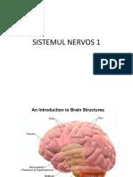 ANATOMIE 10 SISTEMUL NERVOS