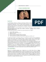 18 - RESPIRATORIO I - Generalidades, resfríos, rinitis, sinusitis, faringitis