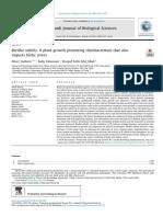 A Plant-Growth Promoting Rhizobacterium