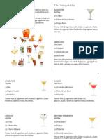 _org_Cocktail I.B.A..pdf