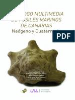 Catalogo Multimedia de Fosiles Marinos d