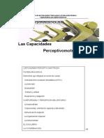Capacidades Perceptivomotrices.pdf