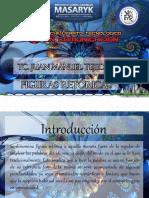 figurasretoricas-150114032331-conversion-gate02 (1)
