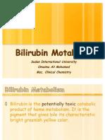 26. Bilirubin Metabolism