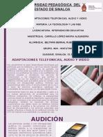 ADAPTACIONES TELEFONICAS, AUDIO Y VIDEO