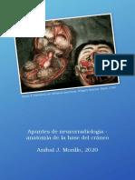 Apuntes de neurorradiología - anatomía de la base del cráneo