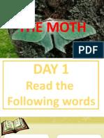 week 22 The Moth