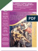 December 19, 2010 Bulletin