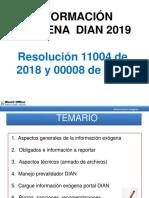 Exogena DIAN 2019 lvg.pdf
