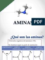 10. AMINAS.ppt