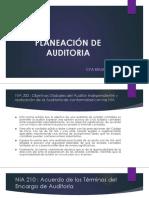 PLANEACIÓN DE AUDITORIA.pdf