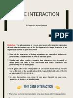 Gene Interaction