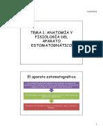 Anatomía y fisiología del aparato estomatognático