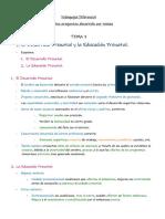 T7 Esquemas Preguntas Desarrollo (2)