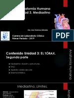 Anatomía Clase 3 Region toracica segunda parte