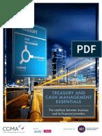 Treasury and Cash Management Essentials.pdf
