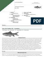 FAO Fisheries & Aquaculture Labeo rohita.pdf
