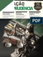 Operação Jurisprudências - Canal Carreiras Policiais.pdf