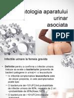 infectia urinara si sarcina short