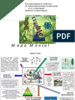 MAPA MENTAL BIOLOGIA JUAN VICENTE DICARLO