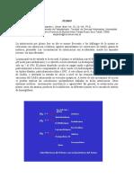 PLOMO.pdf