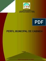223104818-Perfil-de-Cabinda-II-small.pdf