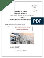 Rapport du ciment.docx