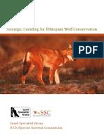 Ethiopian wolf