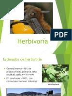 3.4. Herbivoria