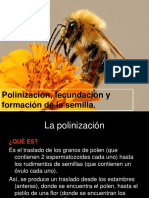 3.5. Polinizacion_dispersion