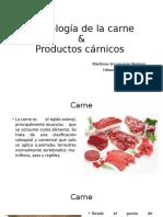Tecnología de la carne.pptx