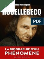 Demonpion, Denis (2019) - Houellebecq. La Biographie d'Un Phénomène
