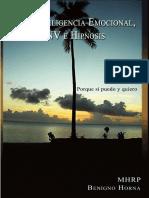PNL, inteligencia emocional, LNV e hipnosis - B Horna (2010) 98