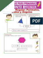 Propiedades-de-los-Polígonos-Regulares-para-Quinto-de-Primaria.pdf