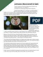 6 new coronaviruses discovered in bats