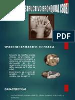 SOB.pdf