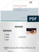 2. Derecho Concursal - Aspectos generales 2 - Recursos procesales.pptx