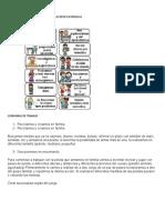 Areas especiales segundo ciclo.docx