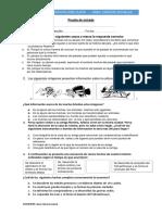 Prueba-de-entrada.pdf