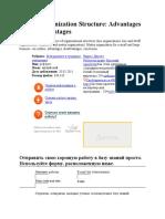 Matrix Organization Structure.docx