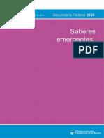 saberes_emergentes