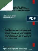 PROMOCIÓN DE LA COMPETENCIA Y PRÁCTICAS COMERCIALES RESTRICTIVAS