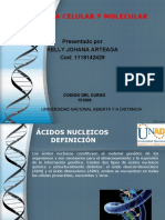 TAREA 4 -  4 BIOMOLÉCULAS ORGÁNICAS-ACIDO NUCLEICO