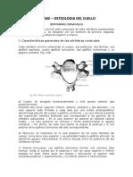 3 CLASE OSTEOLOGIA DEL CUELLO 2020
