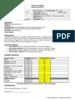 Formato de Informe Final PRUEBA ENVIAR